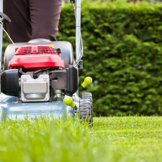 Lawn and Grounds Maintenance